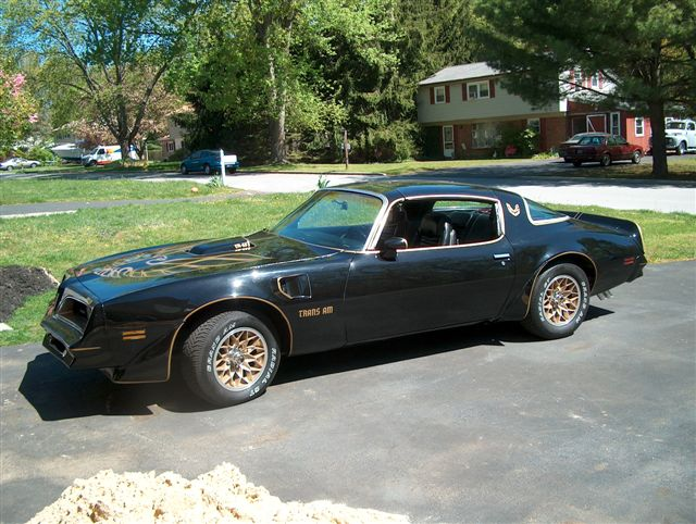 1978 Trans AM For Sale http://www.transamflorida.com/001%20TRANS%20AMS%20CURRENTLY%20BEING%20RESTORED/1978TRANSAMJUN2007CLONE.htm