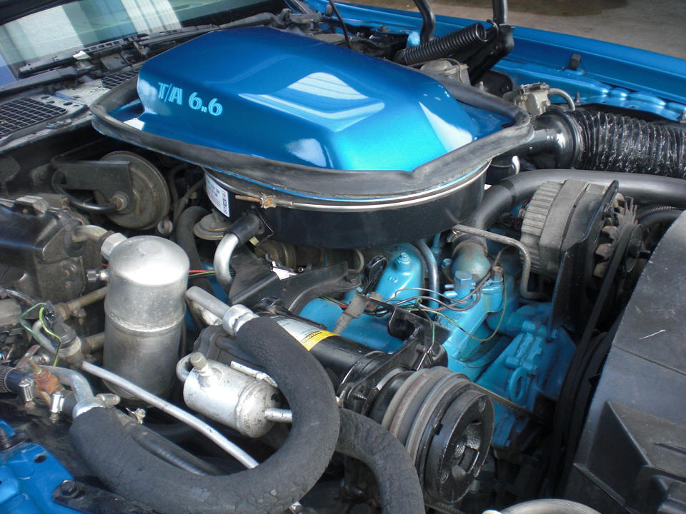 Catalytic Converter Buyers >> 1978Trans Am Blue martinique