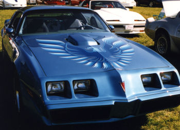 1978-80 Trans Am Hood Decal